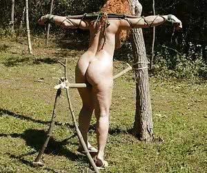 Related gallery: outdoor-tortures (click to enlarge)